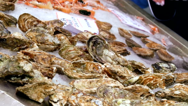 Large selection of fresh oysters and other seafood in the ice at the fish market counter in Spain video