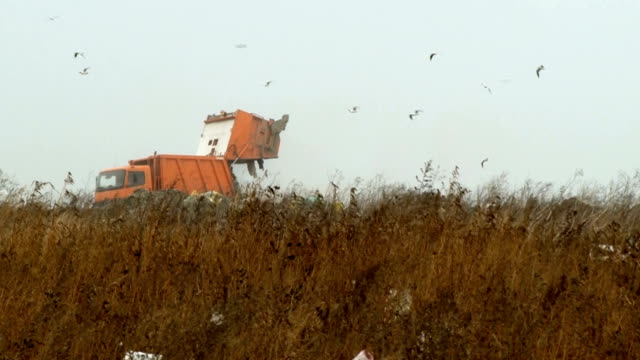 Large Truck Dumps Waste On A Landfill