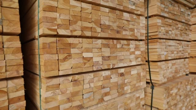 A large warehouse of timber materials, neatly folded timber in a sawmill warehouse, warehouse of wood Wwarehouse of wood. A large warehouse of timber materials, neatly folded timber in a sawmill warehouse, warehouse of wood timber stock videos & royalty-free footage