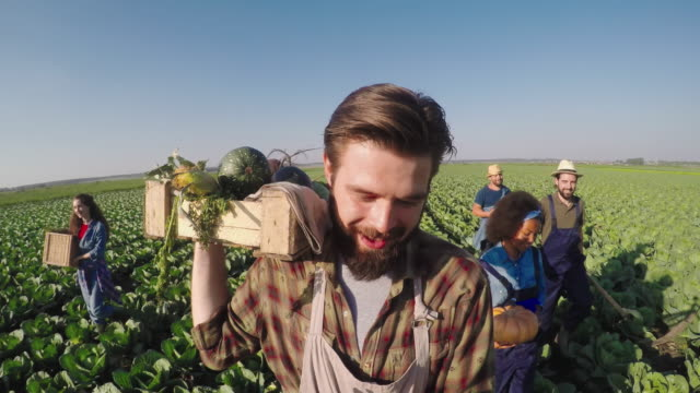 Laughing Farmers Walking with Harvest video