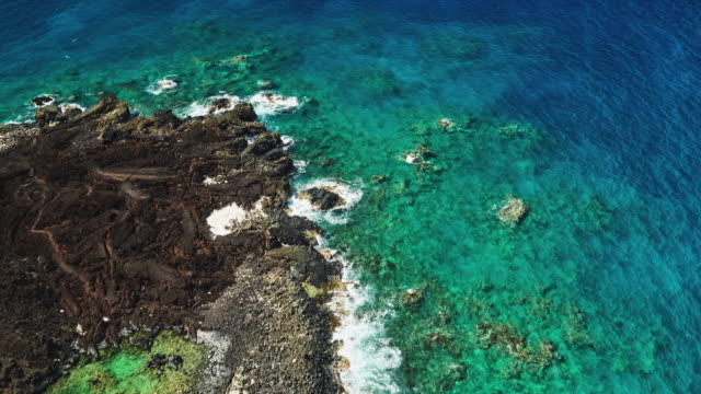 Lava Flow Coral Reef Seascape video