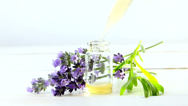 vídeos de stock e filmes b-roll de lavender essential oil in  beautiful bottle on white background - fitoterapia
