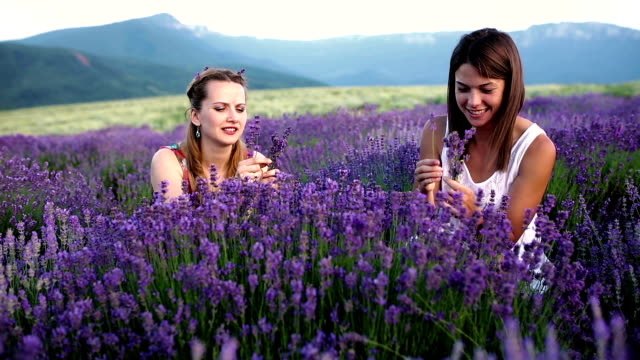 Lavender happiness