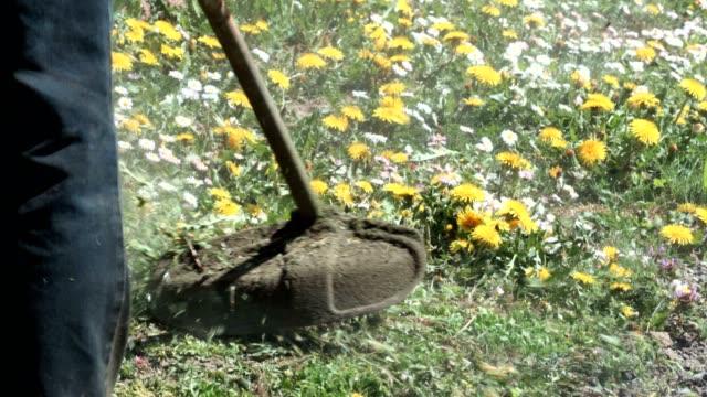 Lawn mower man cut grass with a trimmer - vídeo