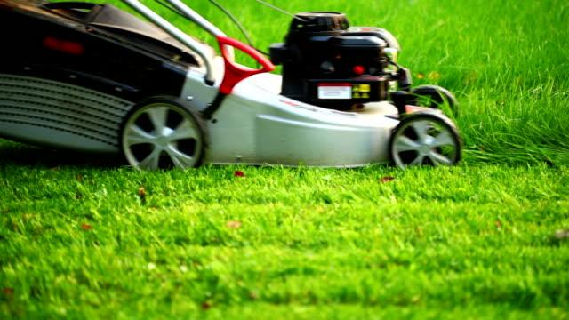 lawn mower - gräsmatta odlad mark bildbanksvideor och videomaterial från bakom kulisserna