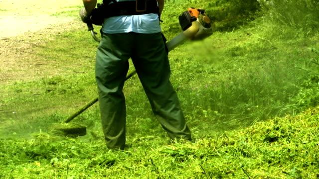 rasenmäher arbeiter mann ausschnittgras im grünen bereich, - gärtnerisch gestaltet stock-videos und b-roll-filmmaterial
