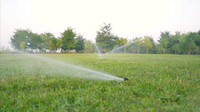 Arrosage de pelouse aspersion d'eau sur l'herbe. - Vidéo