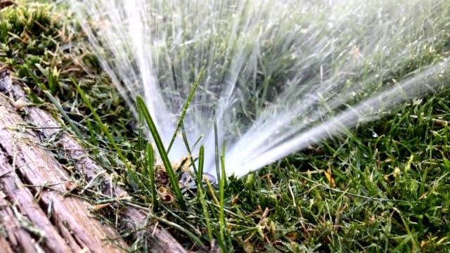 Lawn Yard Sprinkler Irrigation Nozzle Closeup Spraying Water