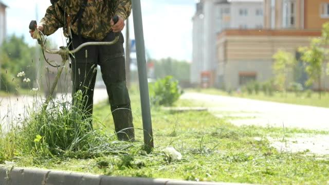 Lawnmower man mows grass to make beautiful design video