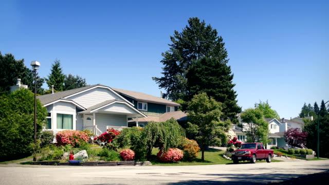 leafy suburbs on sunny day - куст стоковые видео и кадры b-roll