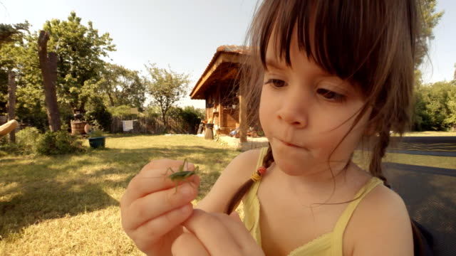 Learning process-A little girl plays with grasshopper video