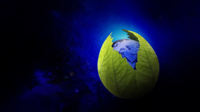 leaves opens earth - earth day stock videos & royalty-free footage
