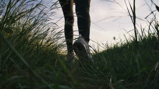 leg shot of a woman runner running in the field at sunset enjoy his time in nature - ghiaia video stock e b–roll