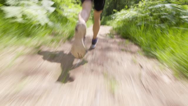 TS jambes de coureur masculin course en forêt - Vidéo