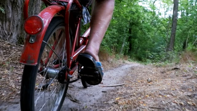legs of a man in rivets on a bicycle riding along a path in the forest. slow motion - bike tire tracks video stock e b–roll
