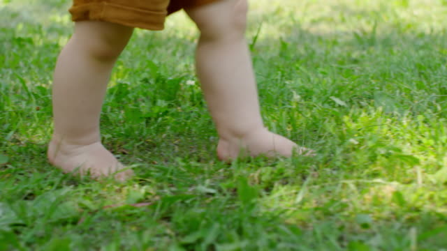 vídeos de stock e filmes b-roll de legs of baby walking barefoot on grass - descalço