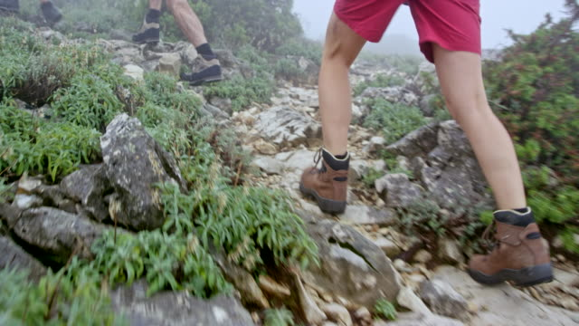 Legs of female hiker walking up the foggy mountain with her friends
