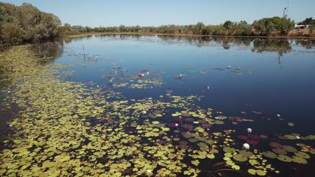 Leighhardt lagoon