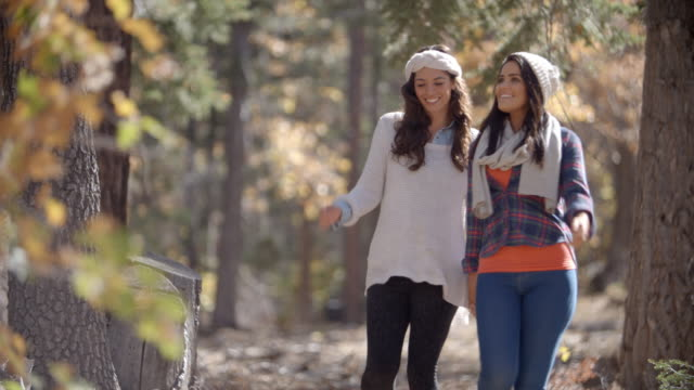 Lesbian couple in a forest holding hands walk towards camera video