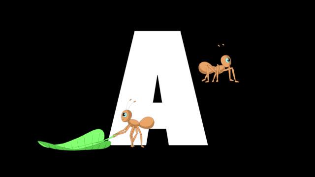 buchstabe a und ameise im vordergrund - comic font stock-videos und b-roll-filmmaterial