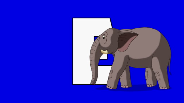 bokstaven e och d elefant (förgrund) - e post bildbanksvideor och videomaterial från bakom kulisserna