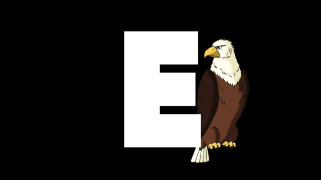 stockvideo's en b-roll-footage met letter e en eagle op de achtergrond - e learning