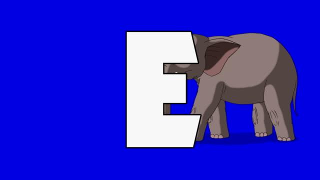 bokstaven e och elefant (bakgrund) - e post bildbanksvideor och videomaterial från bakom kulisserna