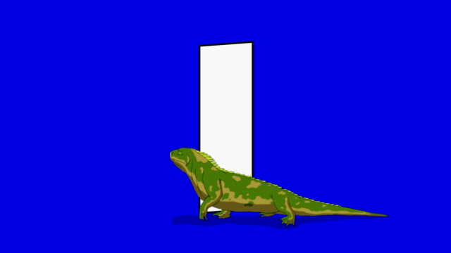 Letter I and Iguana (foreground) video