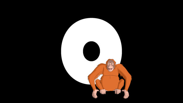 letter o and orangutan on foreground - primate video stock e b–roll