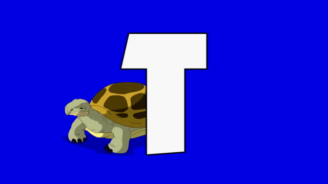 Lettera T e tartarughe (sfondo - video