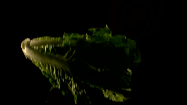 Lettuce tossed into air video