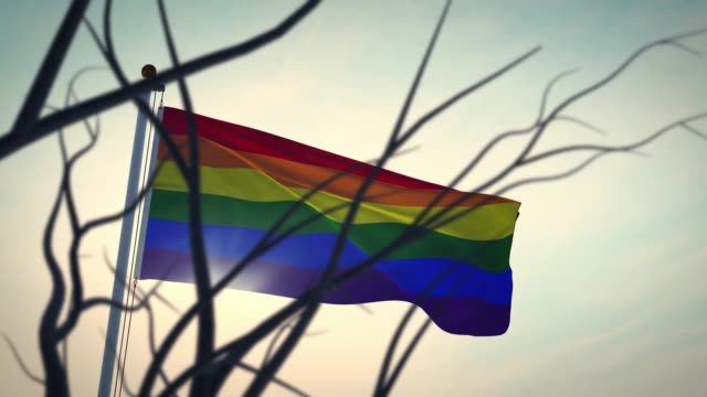 Lgbt rainbow flag represents homosexual or lesbian - video animation Lgbt rainbow flag represents homosexual or lesbian. Gay pride emblem for sexual freedom - video animation bisexuality stock videos & royalty-free footage