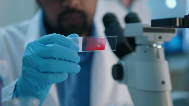 lebensforscher, der in einem labor forscht - reliability stock-videos und b-roll-filmmaterial