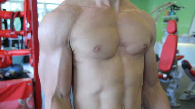 stockvideo's en b-roll-footage met lifting weights - menselijke spier