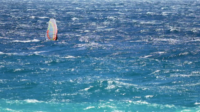 Light blue ocean and man windsurfing on waves, extreme sport, active lifestyle video