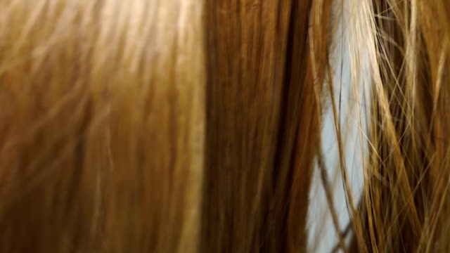 stockvideo's en b-roll-footage met licht bruin haar krullen in slow motion - curly brown hair