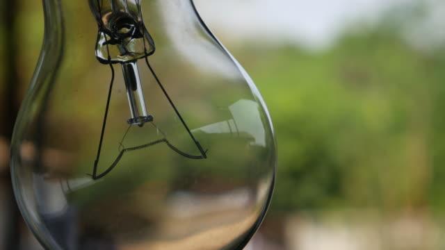 glühbirne sie auf mit natur hintergrund - elektrische lampe stock-videos und b-roll-filmmaterial