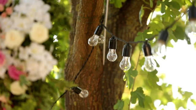 Light bulbs garland and flowers composition. Electric lamps hanging on tree as decoration for holiday close up rack focus video