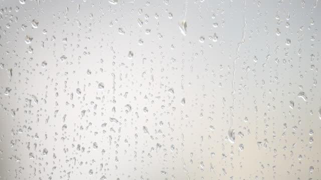 HD light rain on window video
