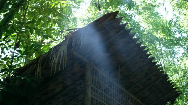 Light rays over the hut in forest