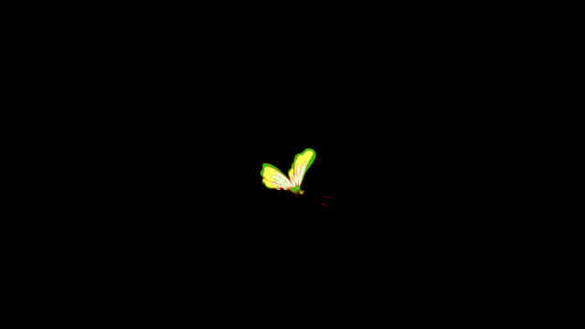Light yellow butterfly flies alpha Light yellow butterfly flies. Animated footage isolated with alpha channel. butterfly insect stock videos & royalty-free footage