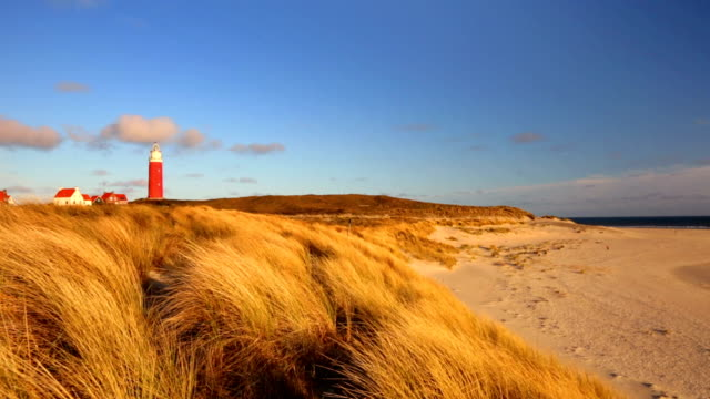 lighthouse on texel island in the netherlands in morning light - dutch architecture stock videos & royalty-free footage