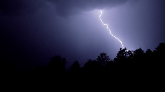 閃電的森林上空 - lightning 個影片檔及 b 捲影像