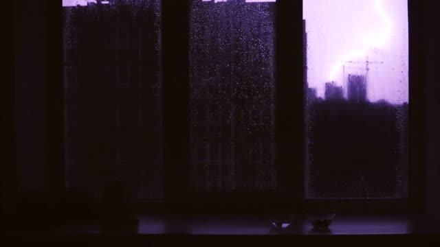 Lightning. The cat sleeps on the windowsill during a lightning Lightning. The cat sleeps on the windowsill during a lightning housing logo stock videos & royalty-free footage