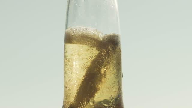 vídeos de stock e filmes b-roll de lime being put in to a beer - coroa