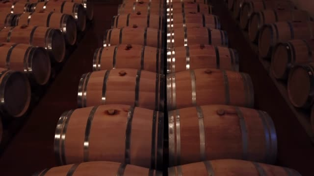 Line of oak barrel in a cellar for a wine perfect fermentation, Bordeaux Vineyard, France