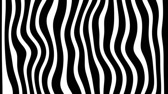 Line Zebra Movement Background Line zebra movement animation background, looped. funky stock videos & royalty-free footage