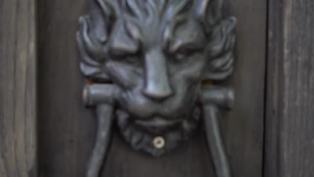 Lion head door handle.