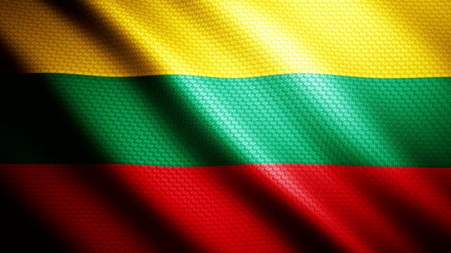 Lithuania flag 4K video
