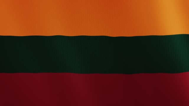 Lithuania flag waving animation. Full Screen. Symbol of the country video